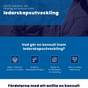 Ledarskapsutveckling| Infographical