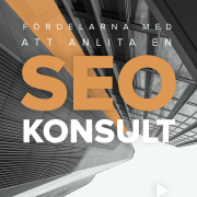 SEO-konsult | Infographical
